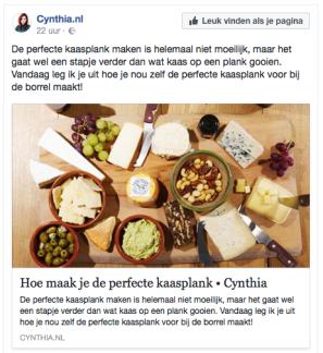 Cynthia Schultz • Blogpost